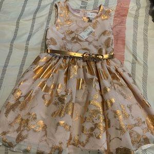 Children's Place Girl's dress